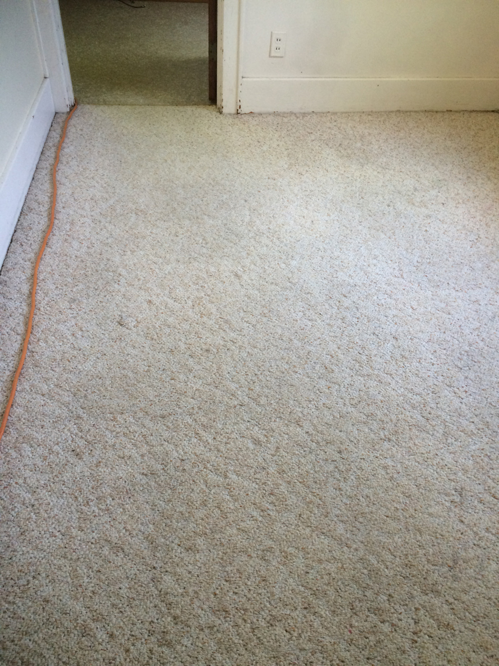 Carpet Cleaning - After